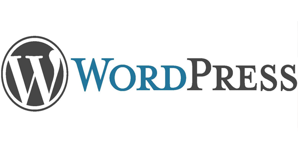 wordpress sajt